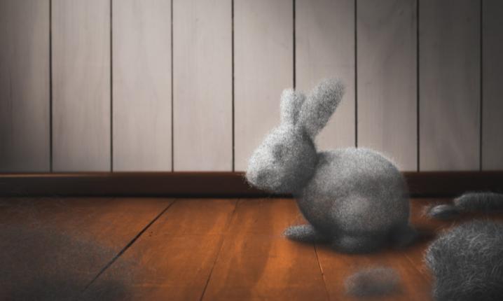 Killer Dust Bunny Special